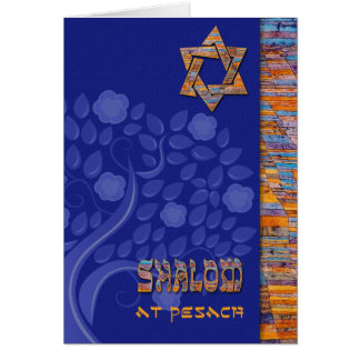 Shalom at Pesach. Customizable Greeting Cards