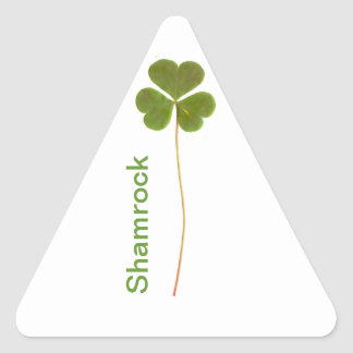 Shamrock for Saint Patrick s Day Triangle Stickers