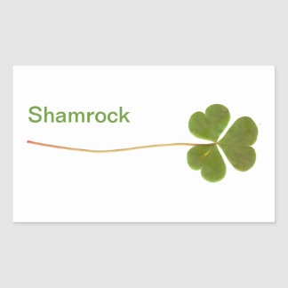 Shamrock for Saint Patrick s Day Stickers