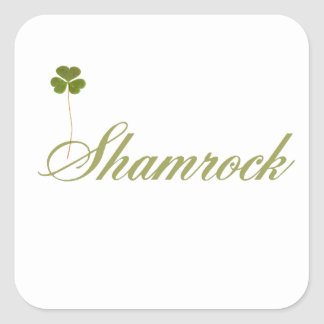 Shamrock - for Saint Patrick's Day Square Sticker