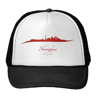 Shanghai skyline in network cap