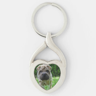 shar pei 2 key ring