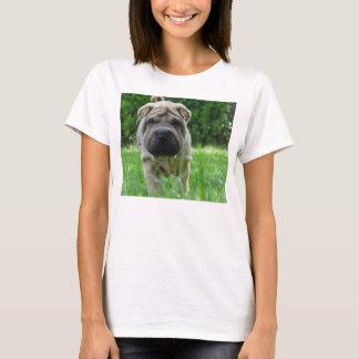 shar pei 2 T-Shirt