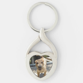Shar_pei_3 Key Ring