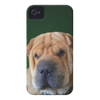 Shar-Pei Dog Blackberry Case