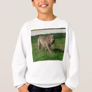 shar pei full 3 sweatshirt