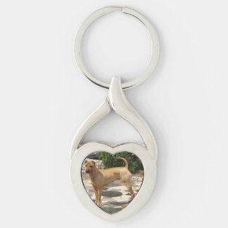 shar pei full key ring