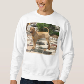 shar pei full sweatshirt