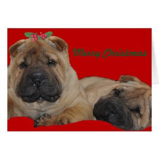 Shar Pei Holly Puppy Christmas Card