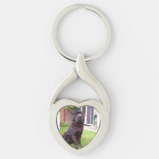 Shar pei longhair sitting Silver-Colored twisted heart key ring
