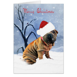 Shar-Pei Merry Christmas Card - Shar-Pei In A Chri