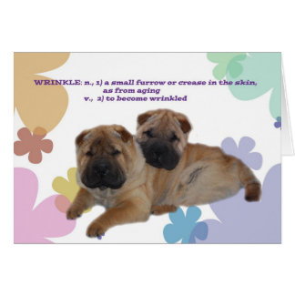 Shar Pei Wrinkle Birthday card