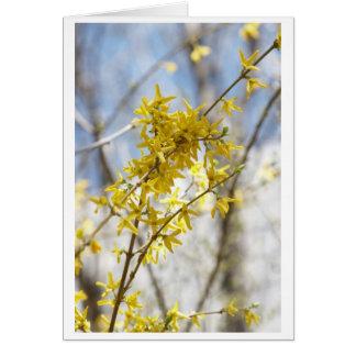 sharing sun greeting card