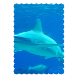 shark-112.jpg 13 cm x 18 cm invitation card