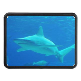 shark-112.jpg trailer hitch covers