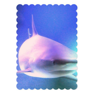 "shark-3.jpg 5"" x 7"" invitation card"