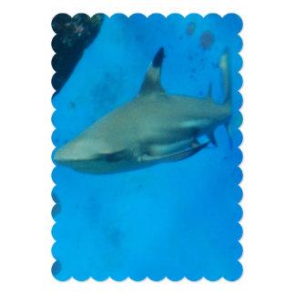 shark-59.jpg 13 cm x 18 cm invitation card