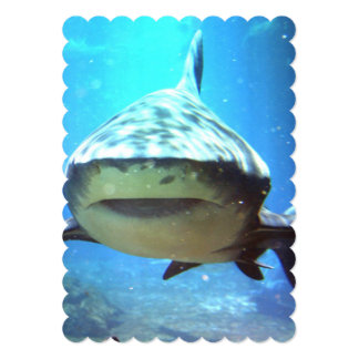 shark-5.jpg 13 cm x 18 cm invitation card