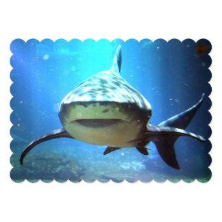 "shark-5.jpg 5"" x 7"" invitation card"