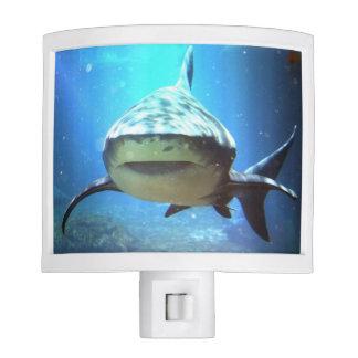 shark-5.jpg nite lite