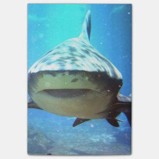 shark-5.jpg post-it® notes