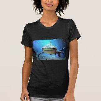 shark-5 tshirts
