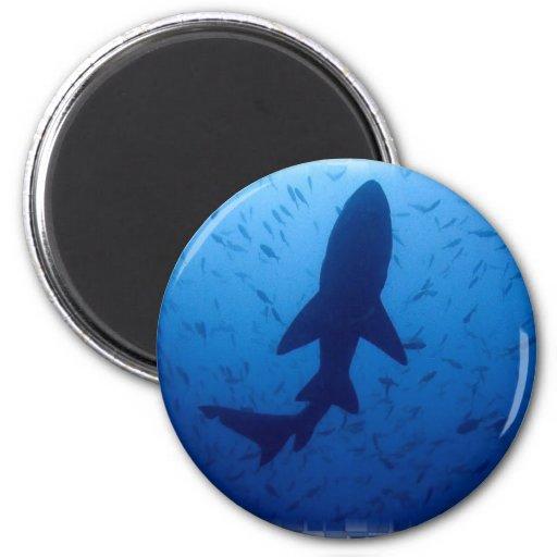 Shark Attack Magnet Fridge Magnet