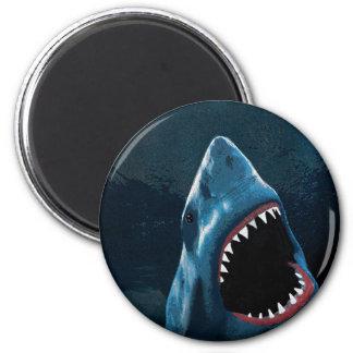 Shark attack magnet