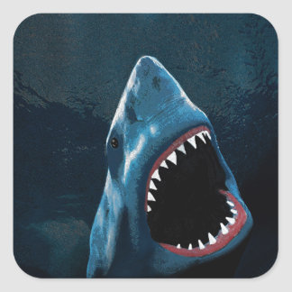 Shark attack square sticker