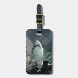 Shark Bag Tag
