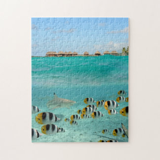 Shark chasing fish in the Bora Bora lagoon jigsaw Jigsaw Puzzle
