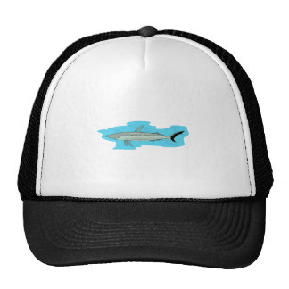Shark Mesh Hats