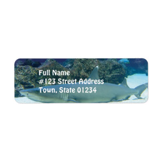 Shark in Coral Reef Mailing Label Return Address Label