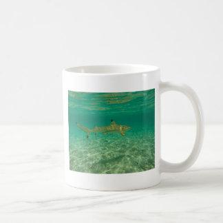 Shark in will bora will bora coffee mug