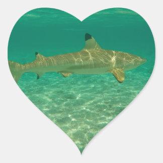Shark in will bora will bora heart sticker