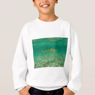 Shark in will bora will bora sweatshirt