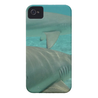 shark iPhone 4 Case-Mate case