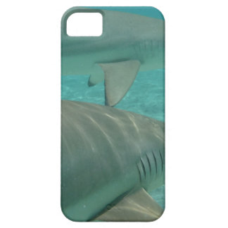 shark iPhone 5 cover