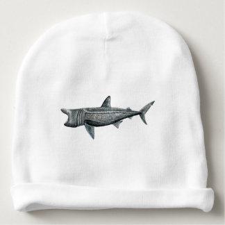 Shark pilgrim baby beanie