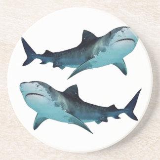 Shark Rally Coaster