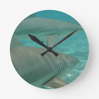 shark round clock