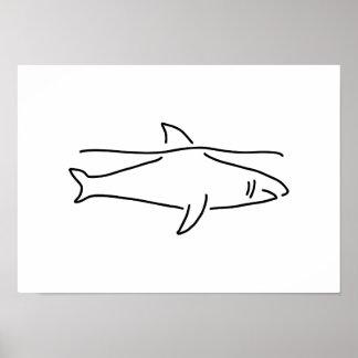 shark shark fish fin sea poster