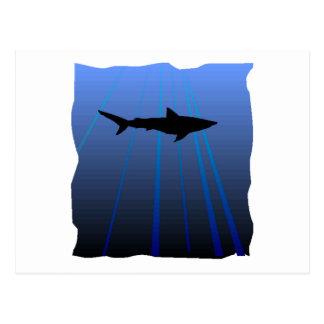 Shark Silhouette Post Cards
