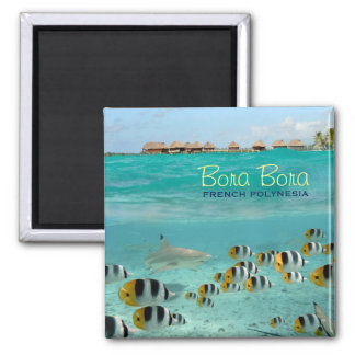 Shark square magnet with Bora Bora text
