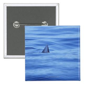 Shark swimming in ocean water 15 cm square badge