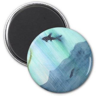 Shark Swimming Magnet