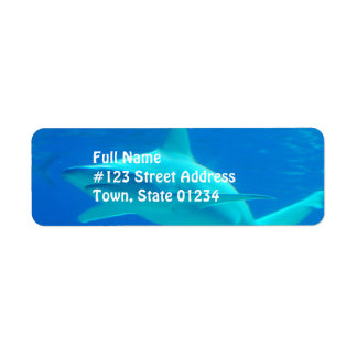 Shark Swimming Mailing Labels