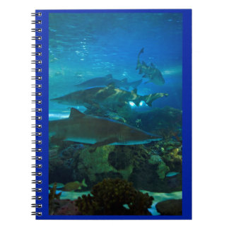 Shark tank aquarium fish notebook
