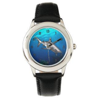 Shark Watch