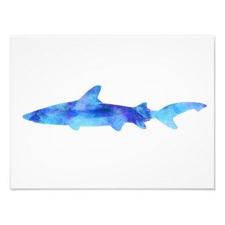 Shark Watercolor Silhouette Dye Teal Blue Aqua Photo